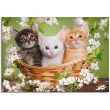"""Диамантен гоблен """"3 котенца"""" 21x25 см с частично облепяне с кръгли диамантчета и красива кутия"""