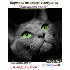 """Картина за рисуване по номера """"Котка. Хищнически поглед"""" 30х30 см с подрамка. Идейка КНО4163"""