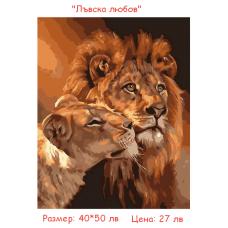 """Пано за рисуване по номера """"Лъвското семейство"""" 40х50см с подрамка и подаръчна кутия"""