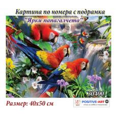 """Картина за рисуване по номера """"Ярки папагалчета"""" 40х50см с подрамка и подаръчна кутия №30400"""