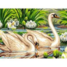"""Картина по номера """"Лебедите"""" 40х50см с подрамка и подаръчна кутия"""