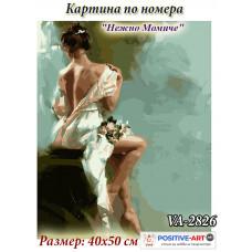 """Картина по номера """"Нежно момиче"""" 40х50см с подрамка и красива кутия с дръжка от Украина VA - 2826"""