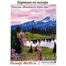 """Картина по номера """"Пейзаж. Живописен боров бряг"""" 40х50см с подрамка и красива кутия с дръжка от Украина VA - 2845"""