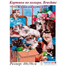 """Картина за рисуване по номера """"Къща на котките"""" 40х50см с подрамка и подаръчна кутия. Brushme"""