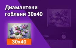 Диамантени гоблени 30x40 см
