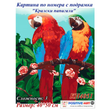 """Картина за рисуване по номера """"Кралски папагали"""" 40х50см с подрамка и подаръчна кутия. Идейка КН4051"""