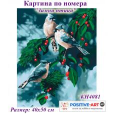 """Картина за рисуване по номера """"Зимни птици"""" 40х50см с подрамка и подаръчна кутия. Идейка КН4081"""