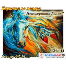 """Картина за рисуване по номера """"Непокорната Галия"""" 40х50см с подрамка и подаръчна кутия. Идейка КН4014"""