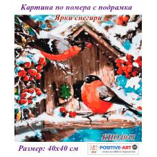 """Картина за рисуване по номера """"Птици. Ярки Снегири"""" 30х30 см с подрамка. Идейка КНО4041"""