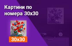 Картини по номера 30x30