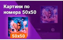 Картини по номера 50x50 см
