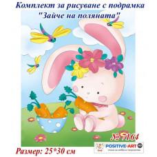 """Комплект за рисуване за деца с подрамка """"Зайче на поляната"""" 25х30 см с подрамка. Идейка №7164"""