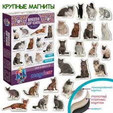Комплектът магнити: Котките. Детски магнити за игра