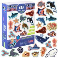 Комплектът магнити: Морски животни. Детски магнити за игра