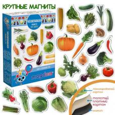 Комплектът магнити: Зеленчуци. Детски магнити за игра