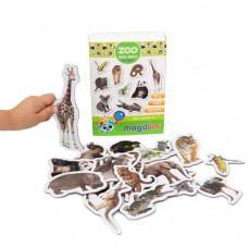 Комплект ZOO - снимки с магнити. Детски магнити за игра